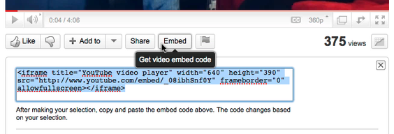 Embed Video in Your WordPress Blog